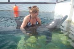 Dolphin show - 20