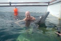 Dolphin show - 23