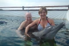 Dolphin show - 25
