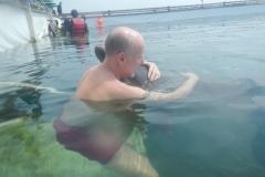 Dolphin show - 38