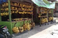 Bali - Nusa dua - 14