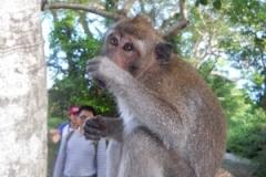 Nusa Dua & Jimbaran - 065