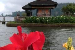 Bali 2017.08.22 - 69